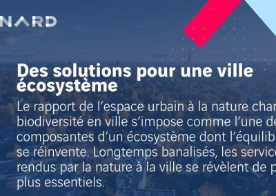 Solutions pour une ville écosystème