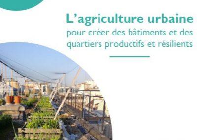Télécharger notre plaquette sur l'agriculture urbaine